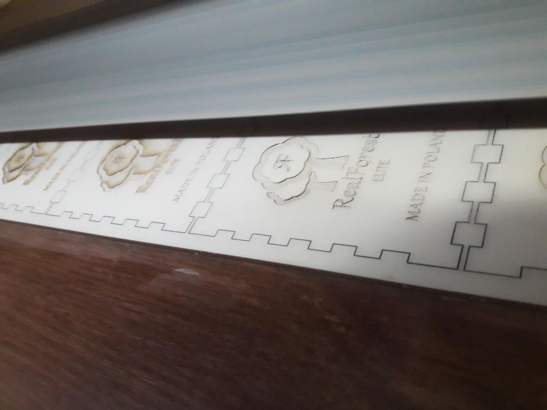 Pudełko do drewnianego zegarka REALFOREST ELITE
